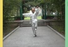 Tai Chi Master & Qi Gong Master